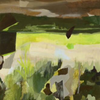 Soliloquoy: Carol Swain